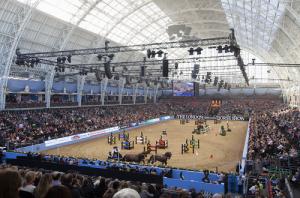 HorseShow_Olympia_Main