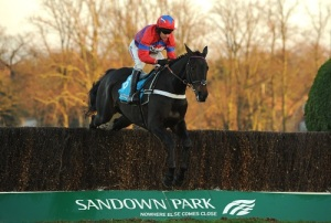 Horse Racing - 2012 Tingle Creek Christmas Festival - Day Two - Sandown Park Racecourse