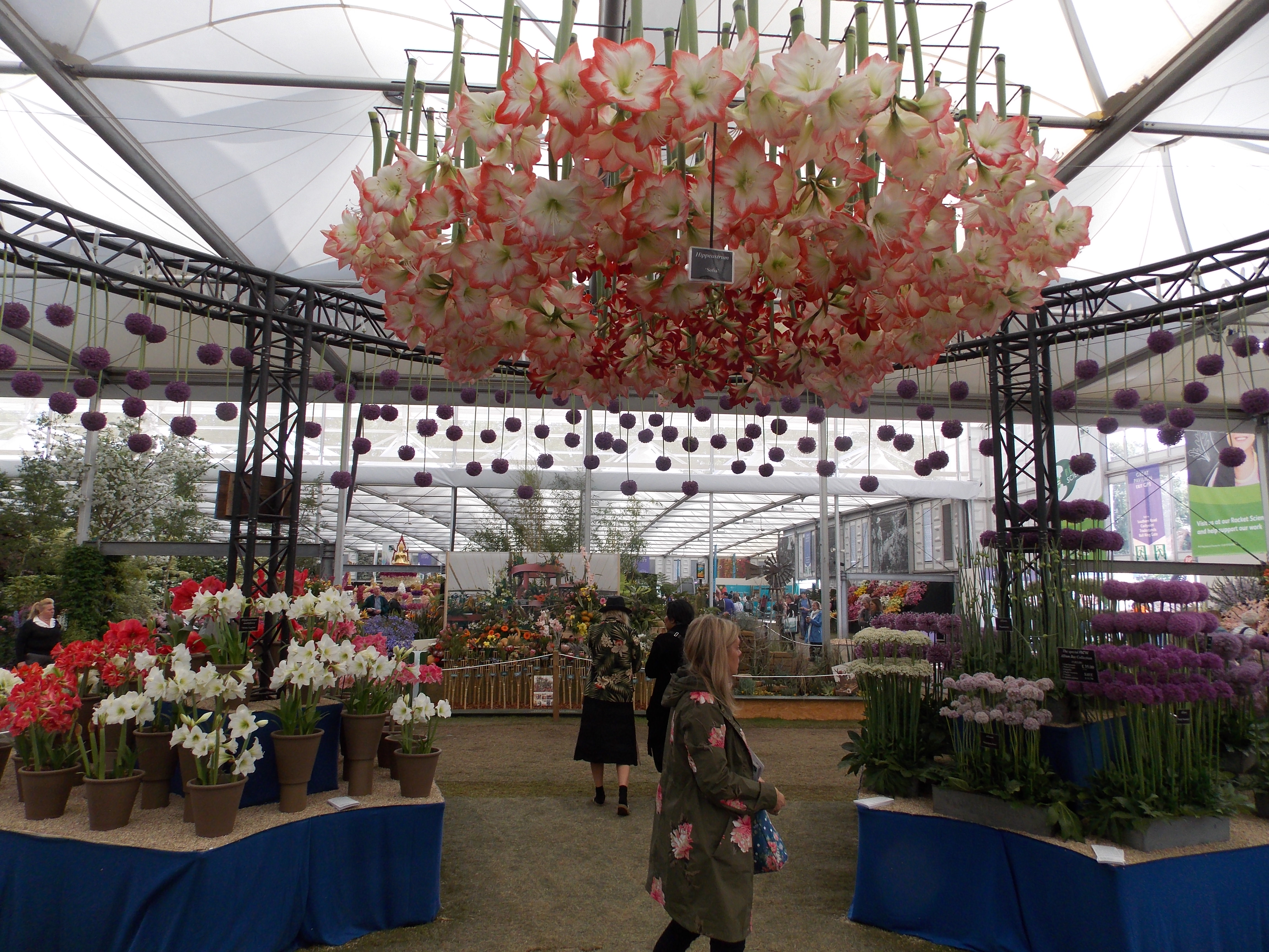 Review Rhs Chelsea Flower Show At The Royal Hospital Chelsea