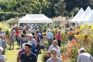 Visitors look at exhibitor displays at the RHS Wisley Flower Show 2014.