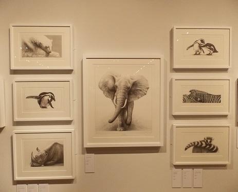 Exhibition Of Wildlife Art Wall Art
