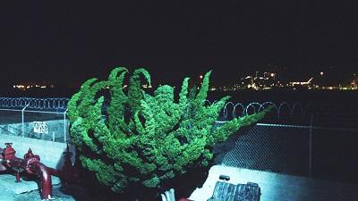 07-cyprien-gaillard-still-from-nightlife
